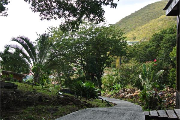 chemin d'accés bungalow